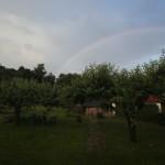 Nad ogrodem zaświtala tęcza